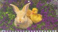 Календарь-2013(кв.мини)Дружба  Арт. 03.1.262