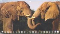 Календарь-2013(кв.мини)Слоны Арт. 03.1.315
