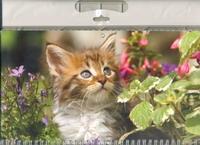 Календарь-2013(кв.тр)Малыш 01.2.297П Именины