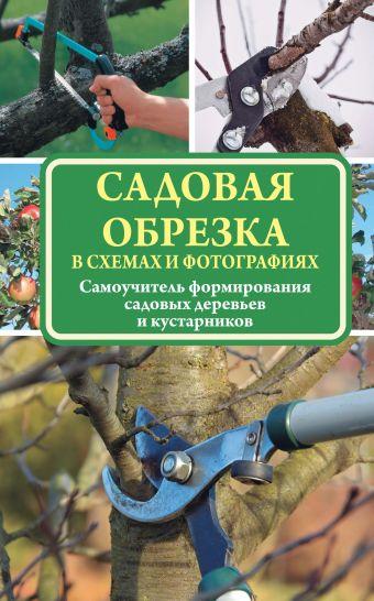 «Садовая обрезка в схемах и фотографиях»