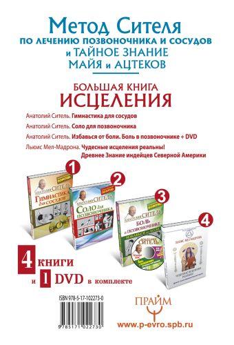 Большая книга исцеления.4 книги и 1 DVD комплекте