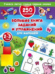 Большая книга заданий и упражнений для малышей 2-3 лет. ДМ