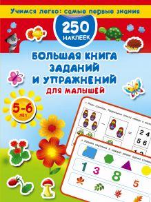 Большая книга заданий и упражнений для малышей 5-6 лет. ДМ
