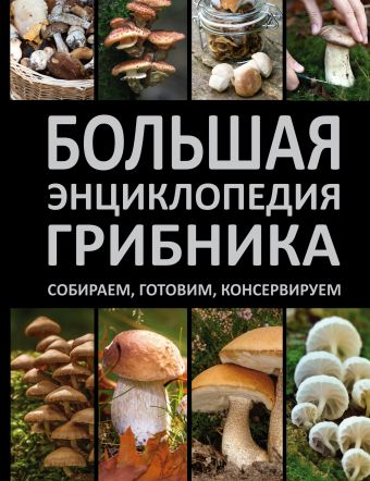 «Большая энциклопедия грибника»