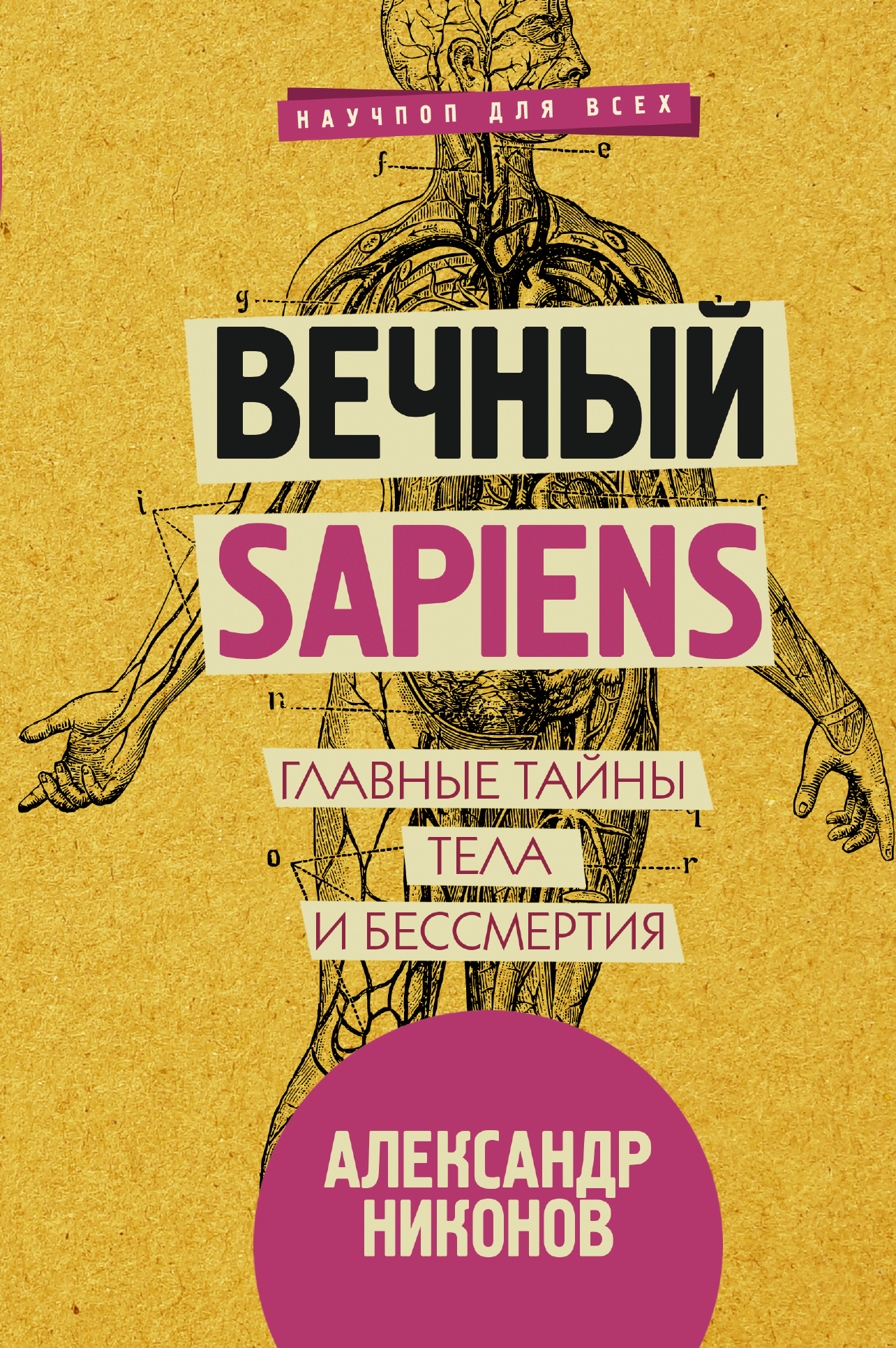 «Вечный sapiens»