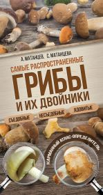 Самые распространенные грибы и их двойники съедобные, несъедобные, ядовитые