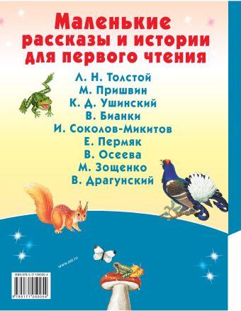 Маленькие рассказы и истории для первого чтения