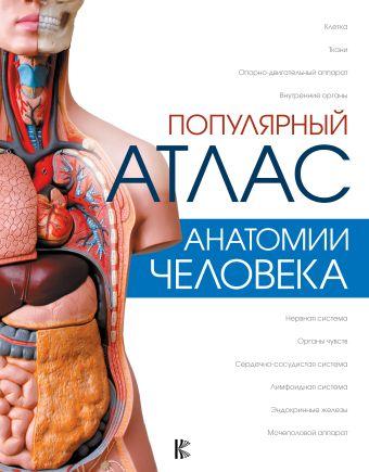 «Популярный атлас анатомии человека»