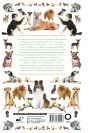 Собаки. Иллюстрированный гид
