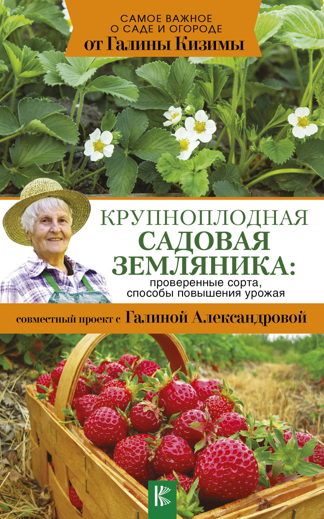 «Крупноплодная садовая земляника»