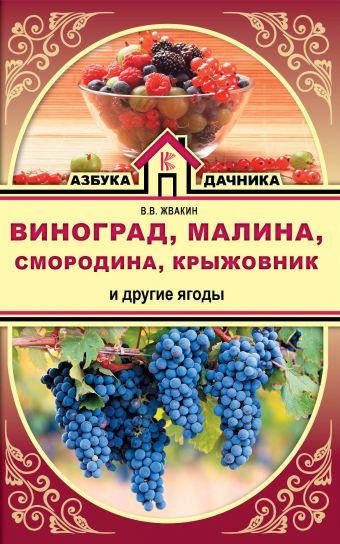 Виноград, малина, смородина, крыжовник и другие ягоды