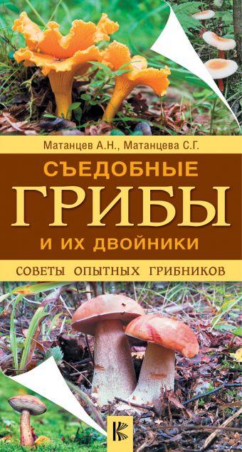 Съедобные грибы и их двойники. Советы опытных грибников