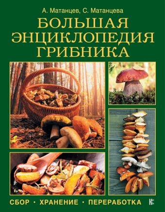 «Большая энциклопедия грибника: сбор, хранение, переработка»