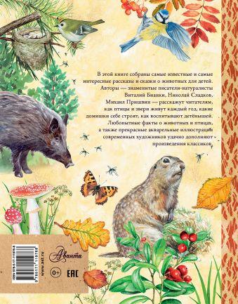 Рассказы и сказки о природе
