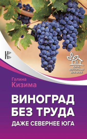 Виноград без труда. Даже севернее юга