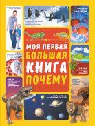 Моя первая большая книга ПОЧЕМУ [Ермакович Дарья Ивановна]