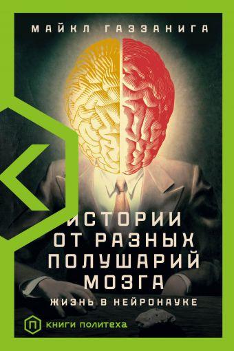 Истории от разных полушарий мозга