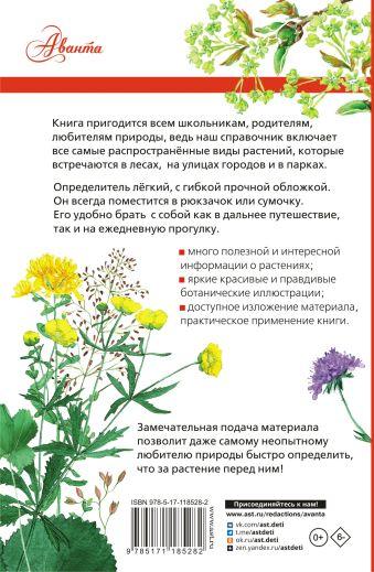Растения России