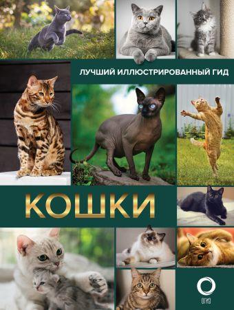 Кошки. Лучший иллюстрированный гид