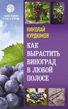 Как вырастить виноград в любой полосе