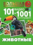 Животные. 101 видео и 1001 фотография