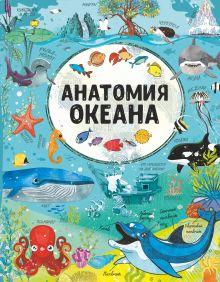 Анатомия океана