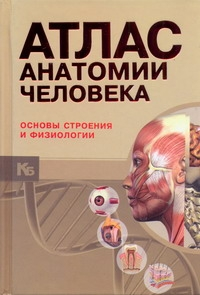 Атлас анатомии человека : основы строения и физиологии = Анатомический атлас