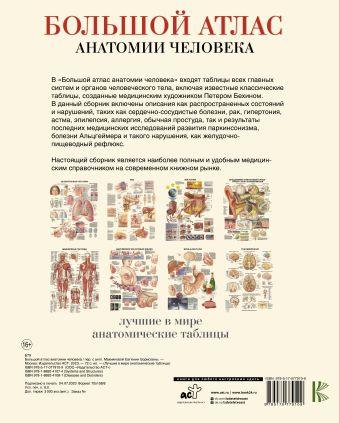 Большой атлас анатомии человека