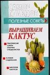 Выращиваем кактус