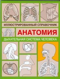 Дыxательная система человека