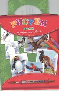 Рисуем птиц: от попугая до пингвина