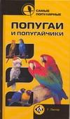 Самые популярные попугаи и попугайчики