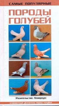 Самые популярные породы голубей