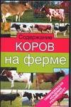 Содержание коров на ферме