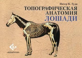 Топографическая анатомия лошади