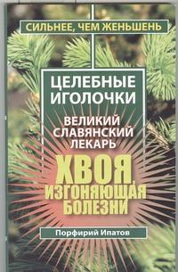 Хвоя, изгоняющая болезни. Великий славянский лекарь