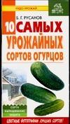Десять самых урожайных сортов огурцов