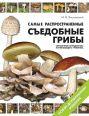 Самые распространенные съедобные грибы: справочник-определитель начинающего грибника
