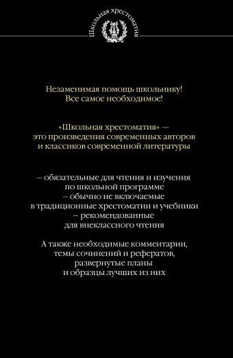 Дубровский. Капитанская дочка