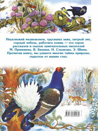 Сказки о животных. Самые интересные лесные истории