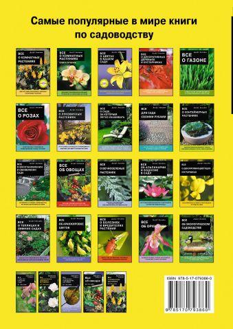 Все о клумбовых растениях