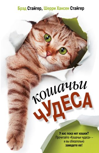 «Кошачьи чудеса»