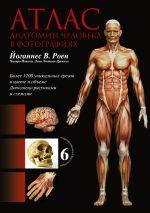 Атлас анатомии человека в фотографиях