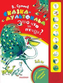 Сказка-мультфильм. Это что за птица?